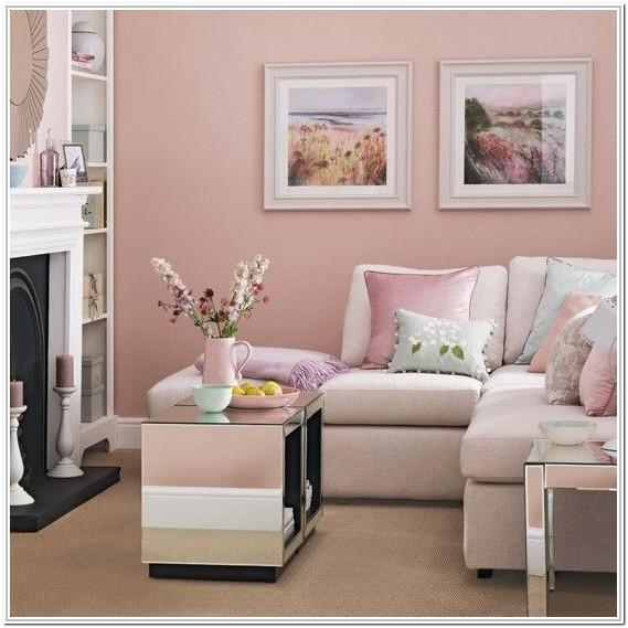Light Pink And Gray Living Room