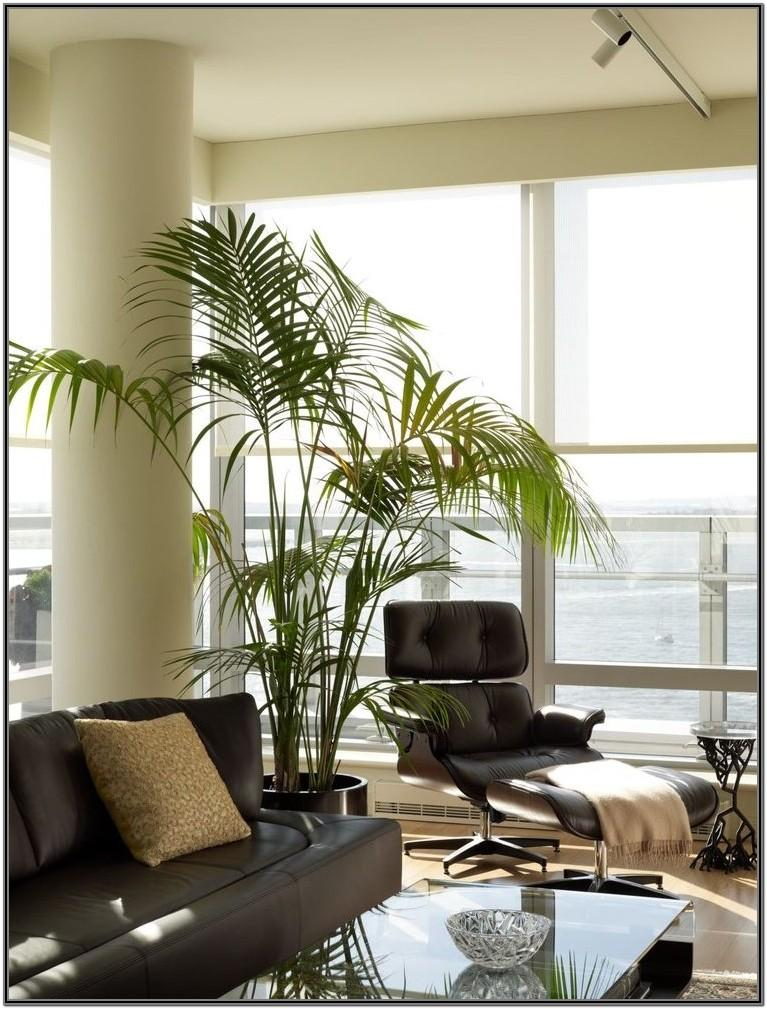 Living Room Large Artificial Plants
