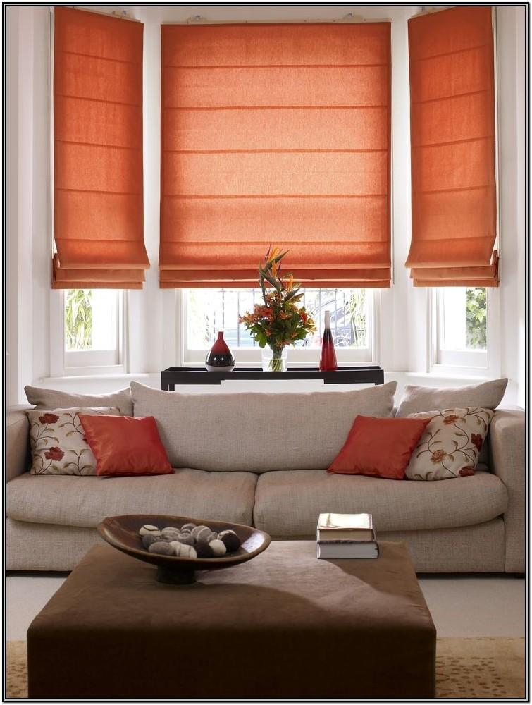Living Room Roman Shades For Windows