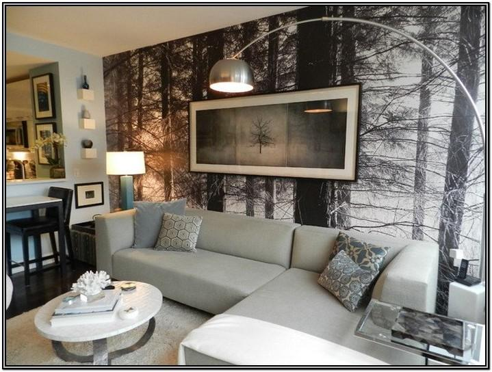 Small Houzz Living Room Ideas