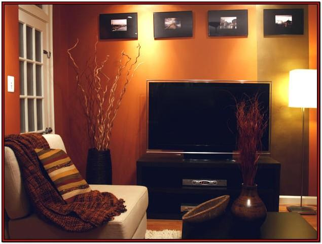 Brown Burnt Orange Living Room