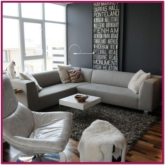 Gray Sofa Living Room Decor