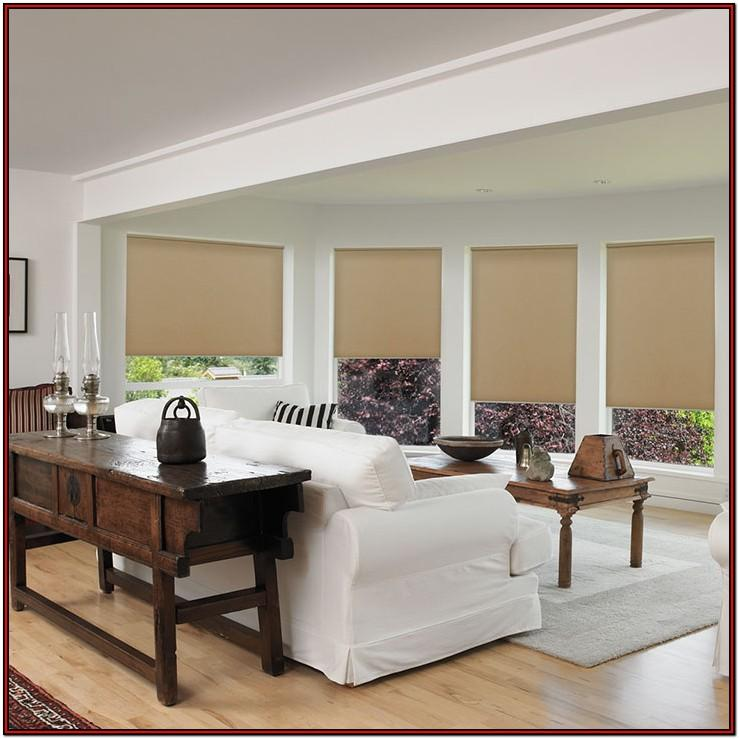 Living Room Window Roller Shades
