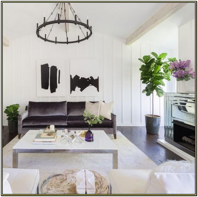 Low Maintenance Best Indoor Plants For Living Room