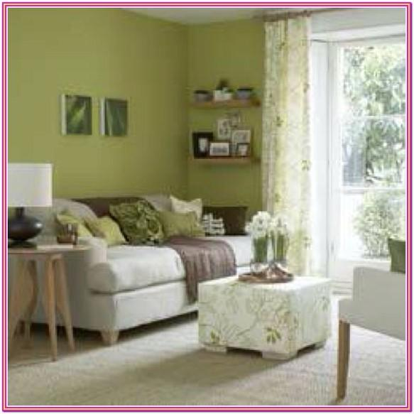 Pinterest Living Room Paint Color Ideas