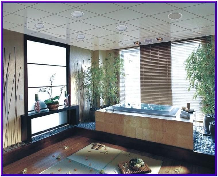 Pvc Ceiling Panels Designs For Living Room