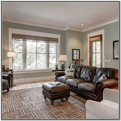 Sherwin Williams Gray Living Room Paint Ideas
