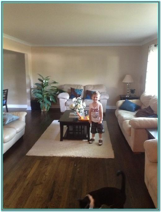 Small Rectangular Living Room Furniture Arrangement