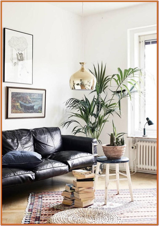 Black Leather Furniture Living Room Design Ideas