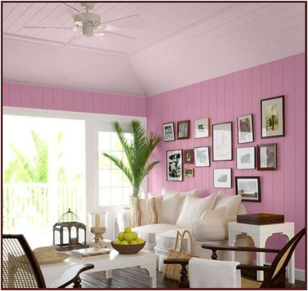 Ceiling Paint Color Ideas For Living Room