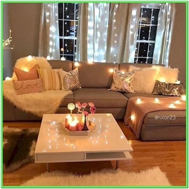 Comfy Pet Friendly Living Room Idea