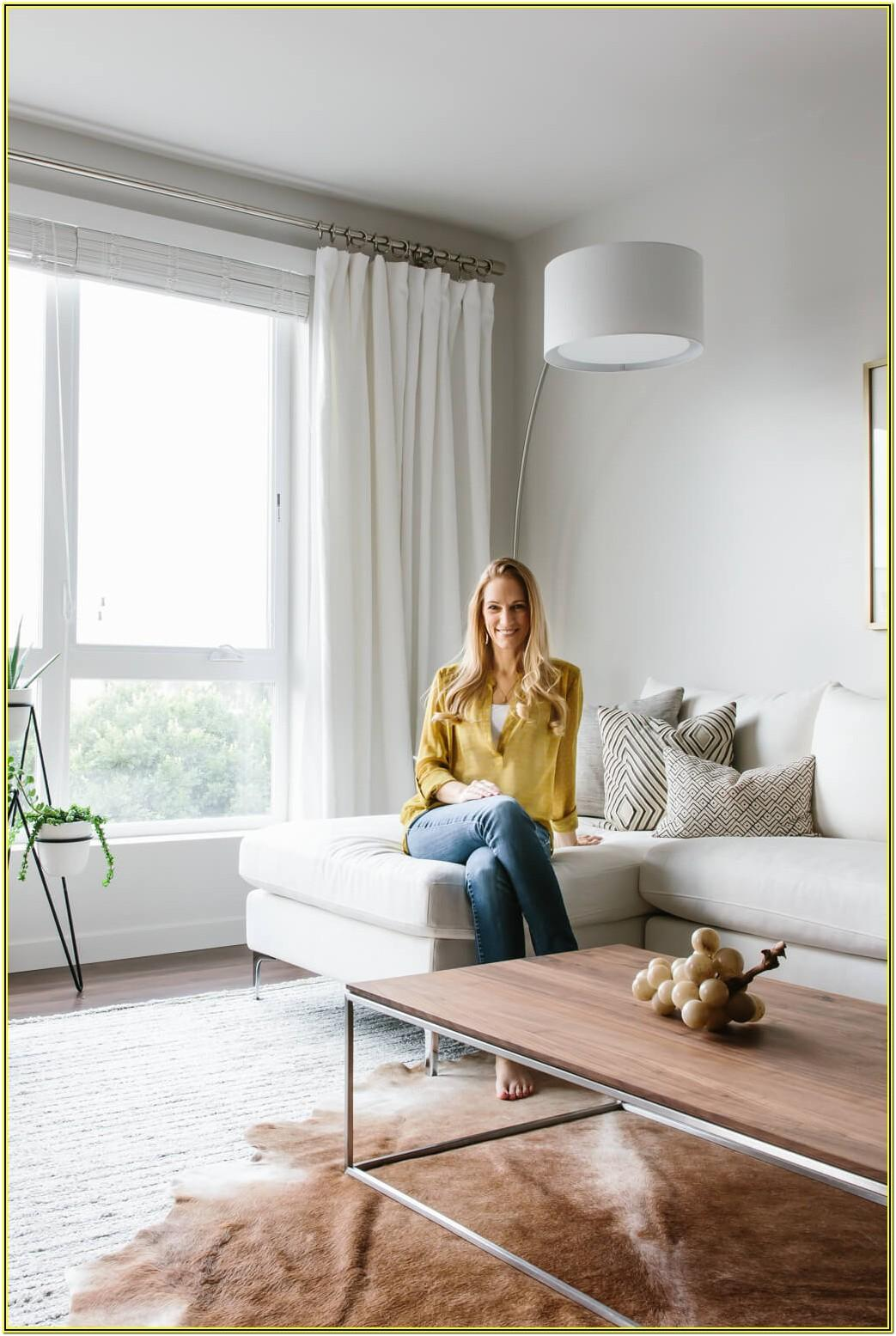 Contemporary Minimalist Modern Contemporary Minimalist Living Room