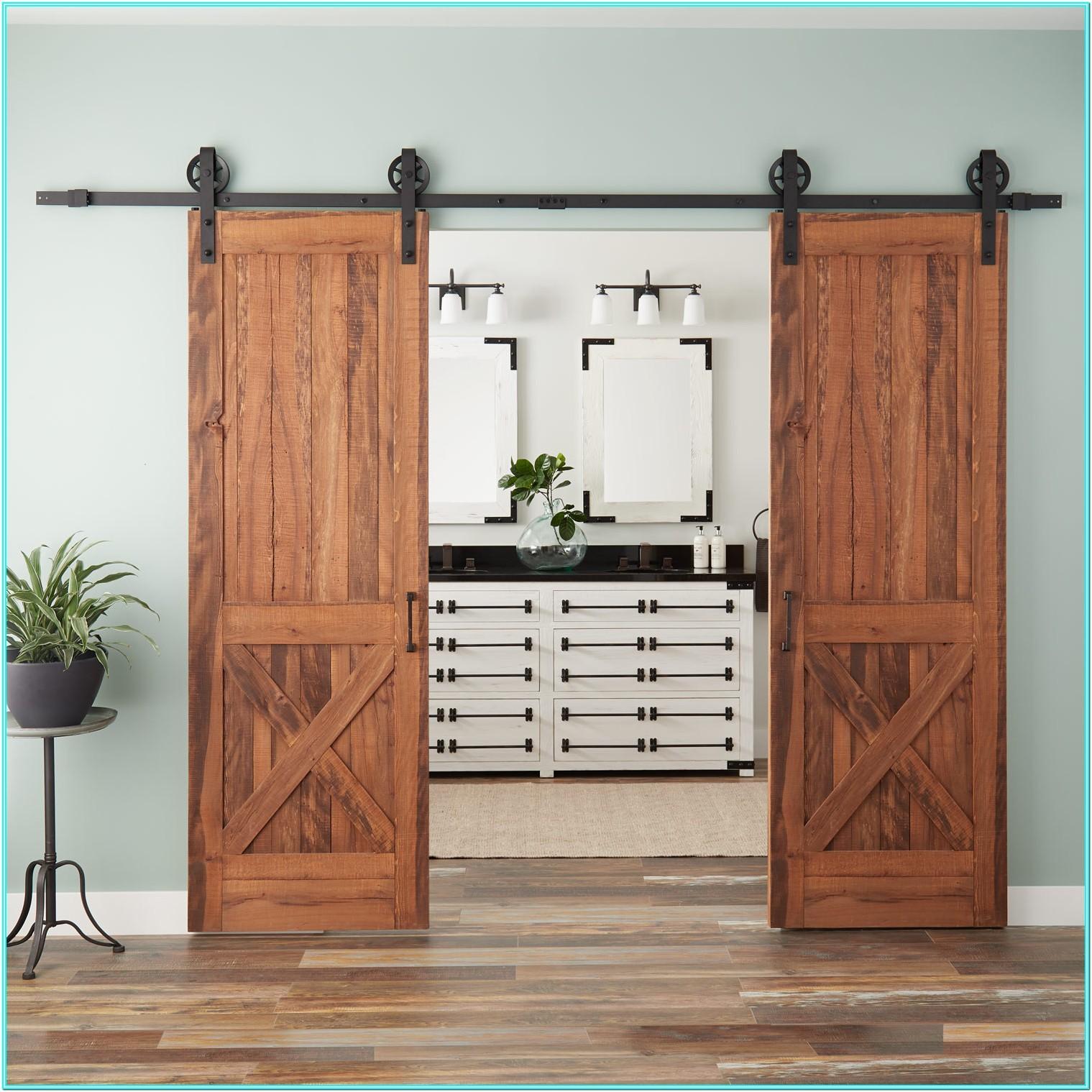 Double Barn Doors Living Room