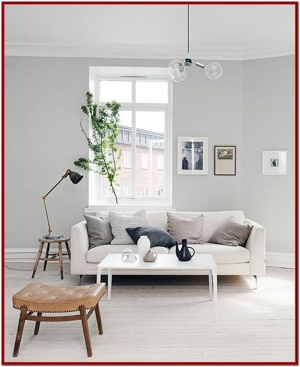 Light Grey Grey Wall Paint Living Room
