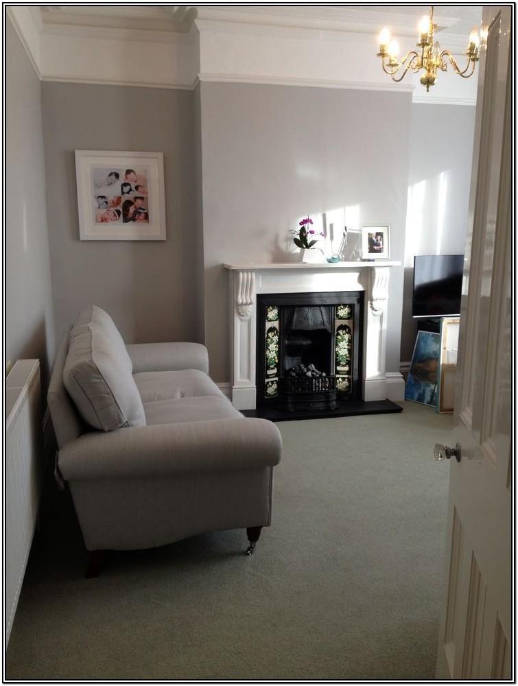Living Room Ash Gray Wall Paint