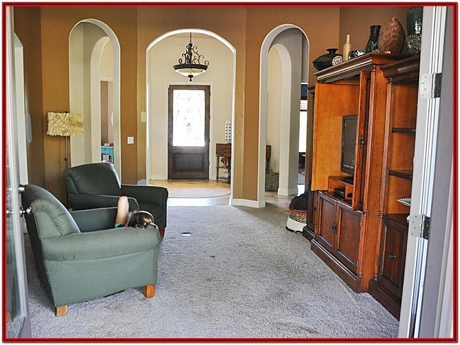 Living Room Carpet Colors Home Depot