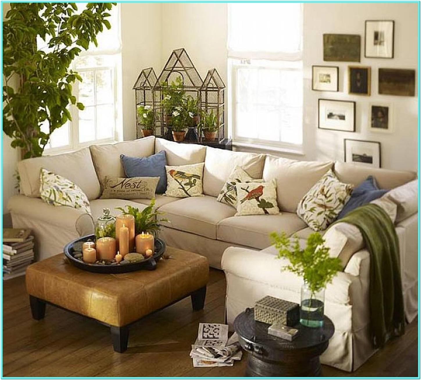 Living Room Design Ideas With Plants