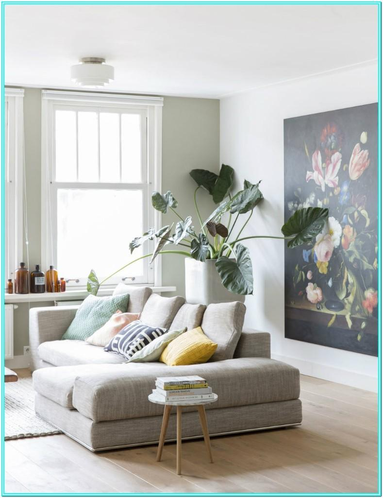Living Room Design Plants