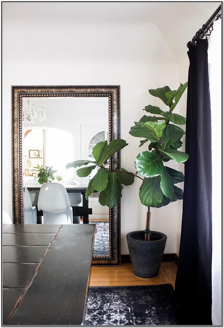 Living Room Faux Indoor Plants
