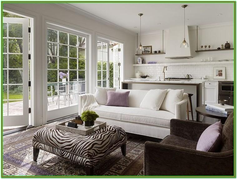 Living Room French Window Design
