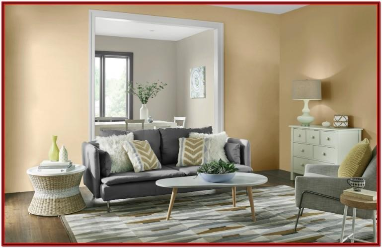 Living Room Home Depot Paint Colors