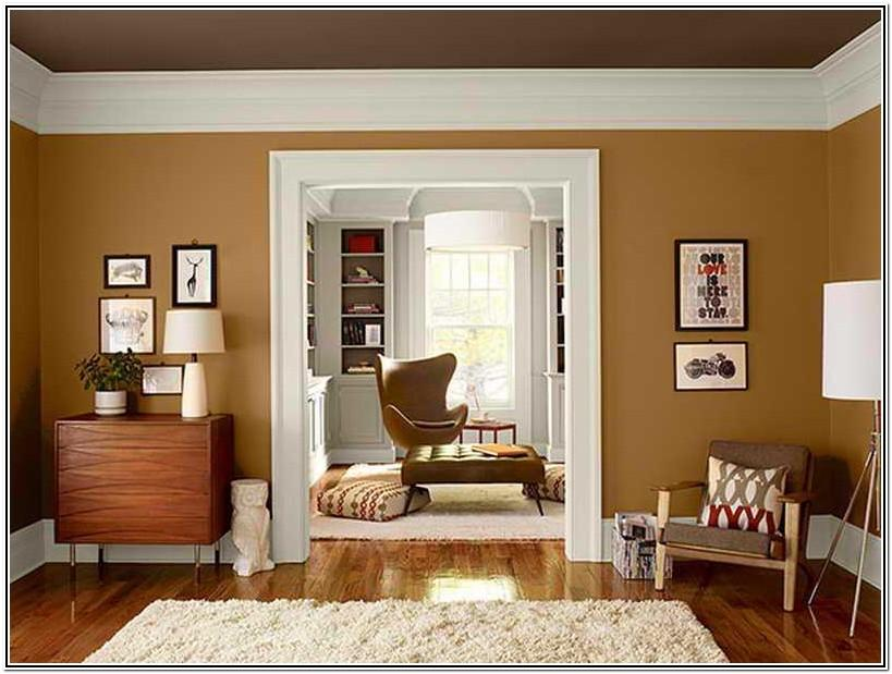 Living Room Ideas Dark Colors