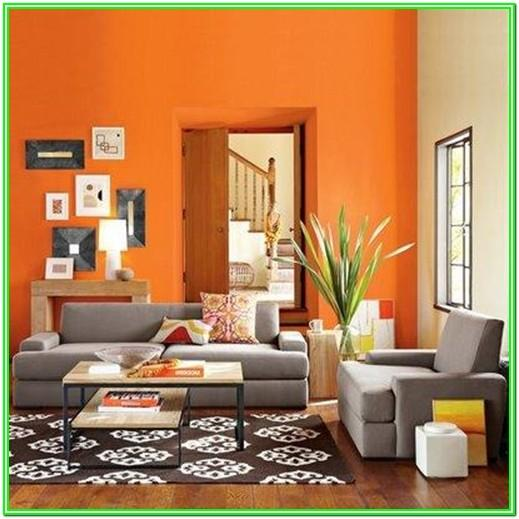 Living Room Interior Paint Color Combinations Images