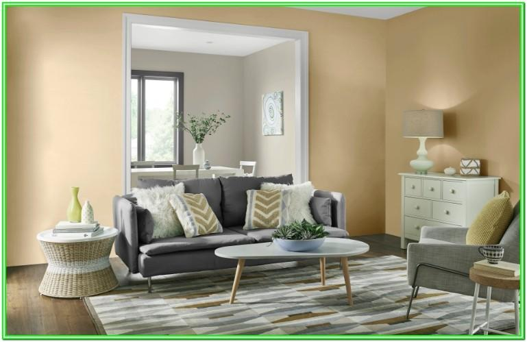 Living Room Paint Colors Images