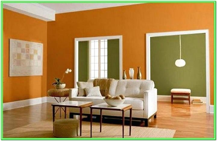 Paint Living Room Color Combination India