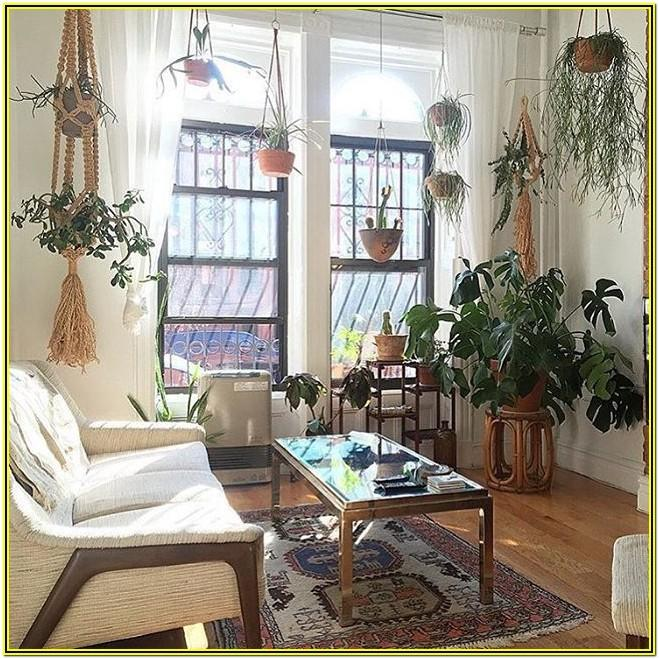 Apartment Living Room Ideas With Plants