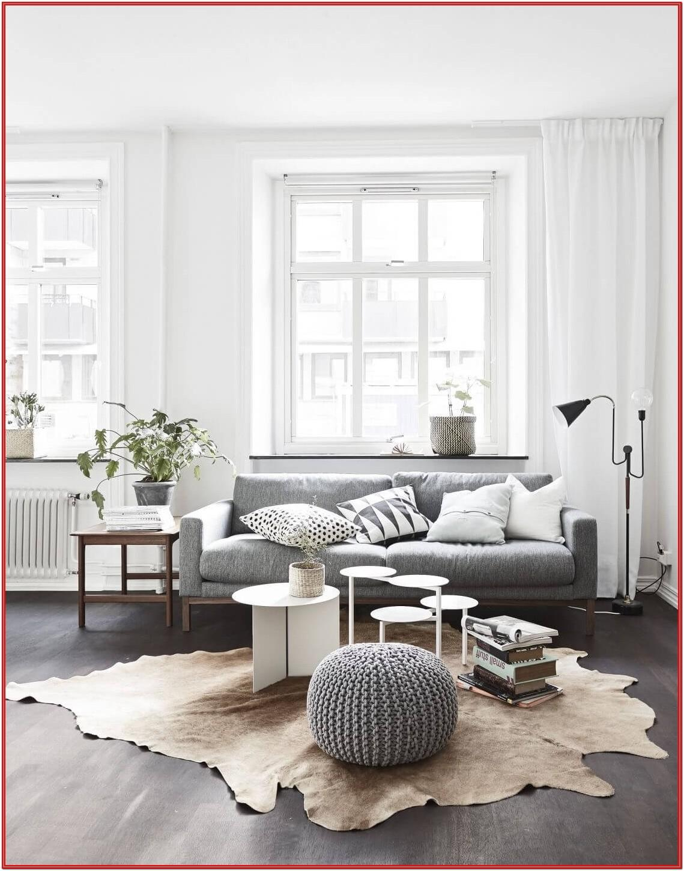 Contemporary Modern Living Room Design Ideas
