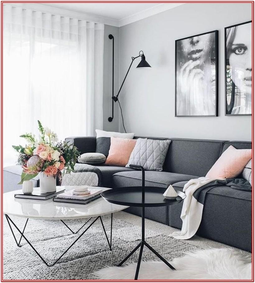 Grey Couch Living Room Ideas Pinterest