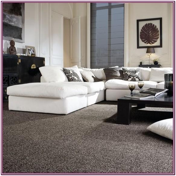 Light Gray Carpet Living Room