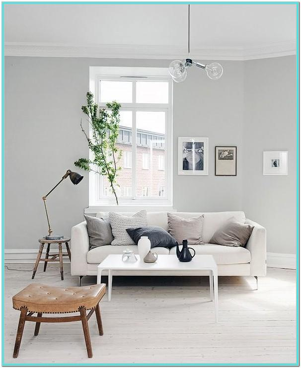 Light Grey Paint Living Room Ideas