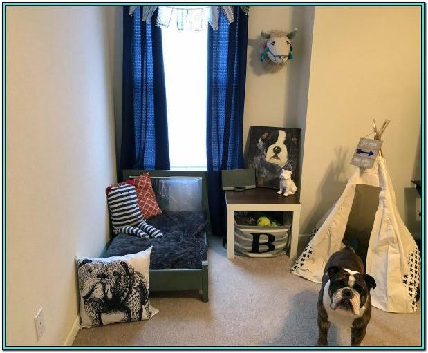 Living Room Ideas For Homes With Dogs