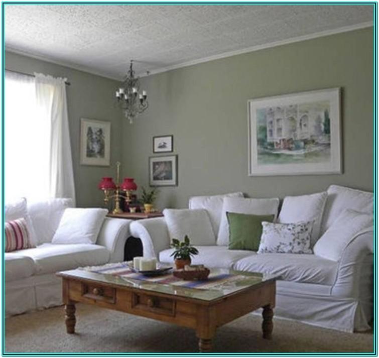 Living Room Ideas Sage