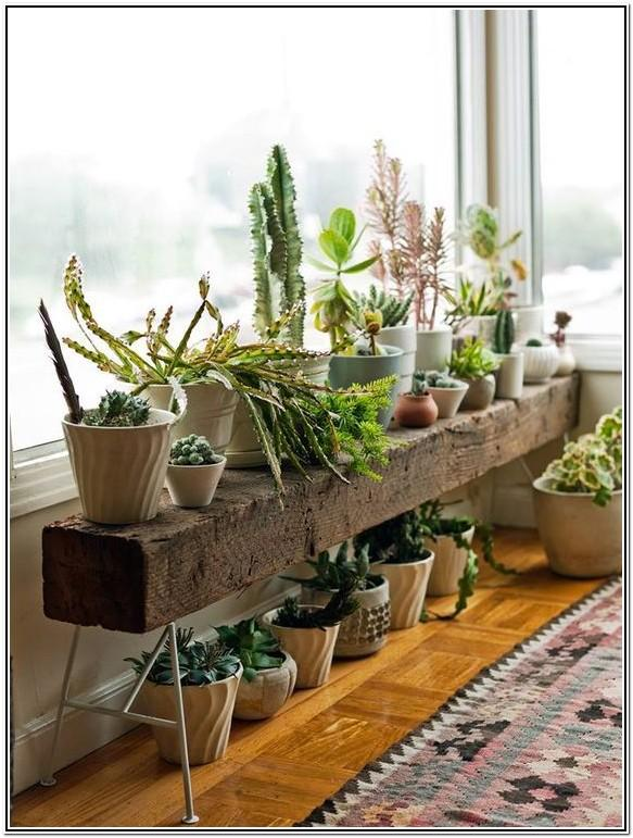 Living Room Indoor Plant Stand Ideas