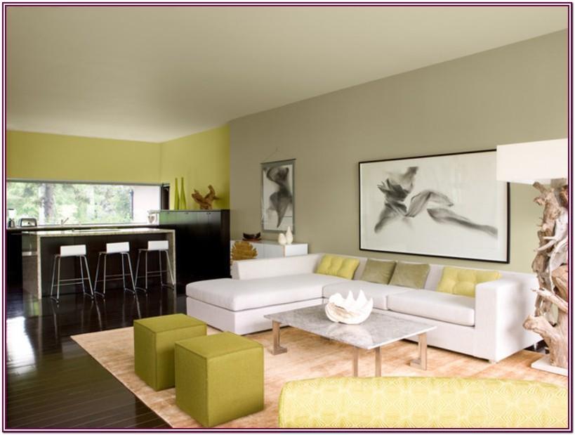 Living Room Kitchen Combo Paint Colors