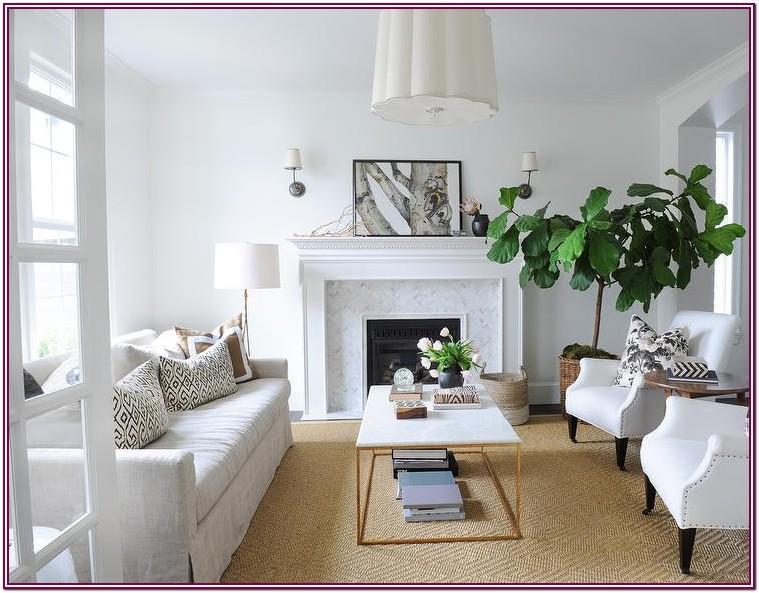 Modern Jute Rug Living Room