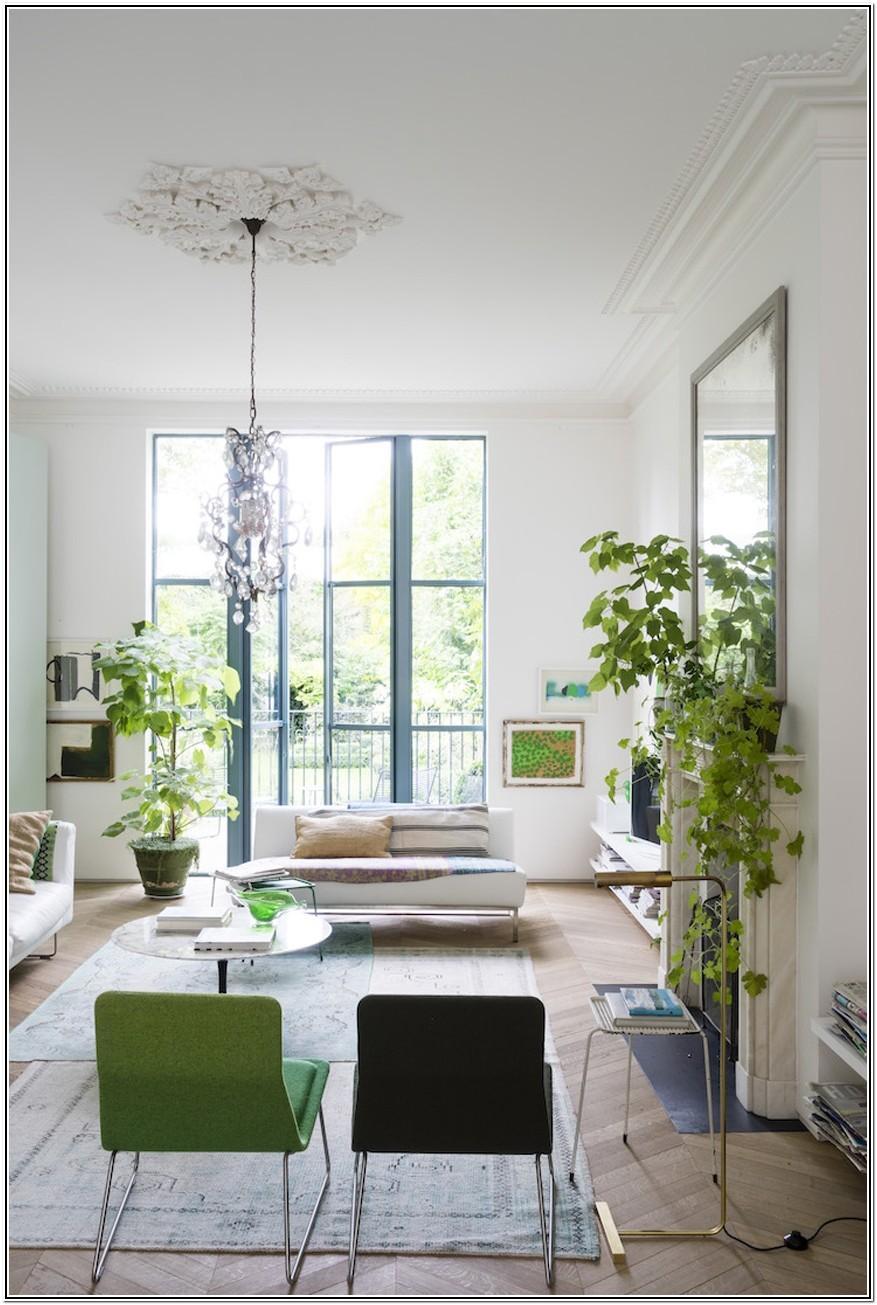 Modern Living Room Ideas Plants