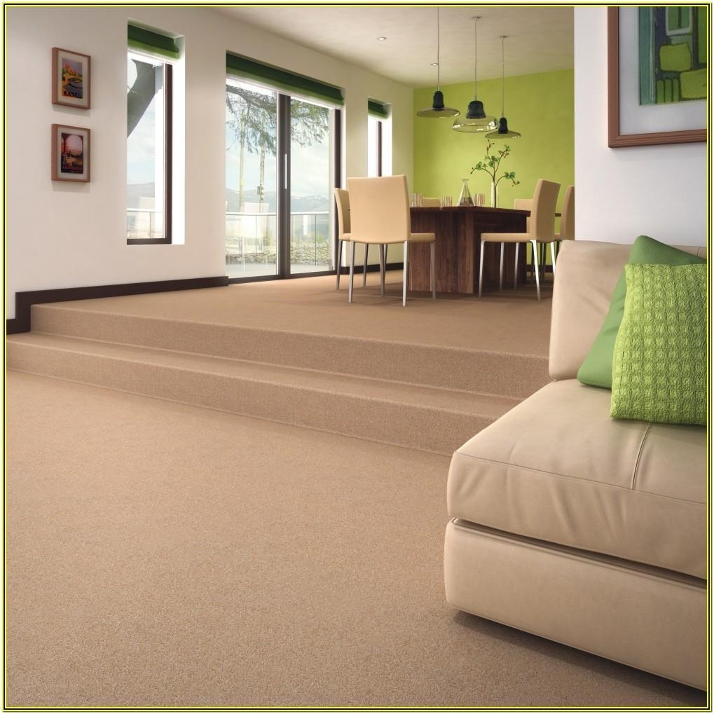 Modern Living Room Ideas With Beige Carpet