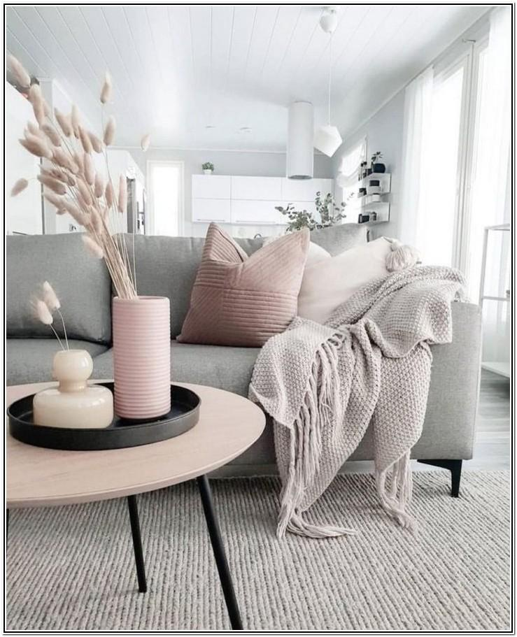 Modern Pink And Grey Living Room Ideas