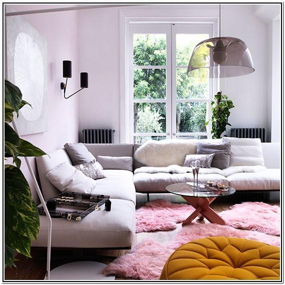 Pink Rug Living Room Ideas