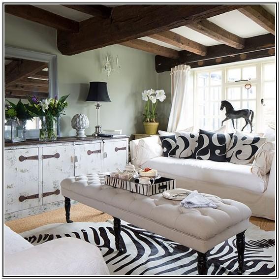 Zebra Print Living Room Ideas