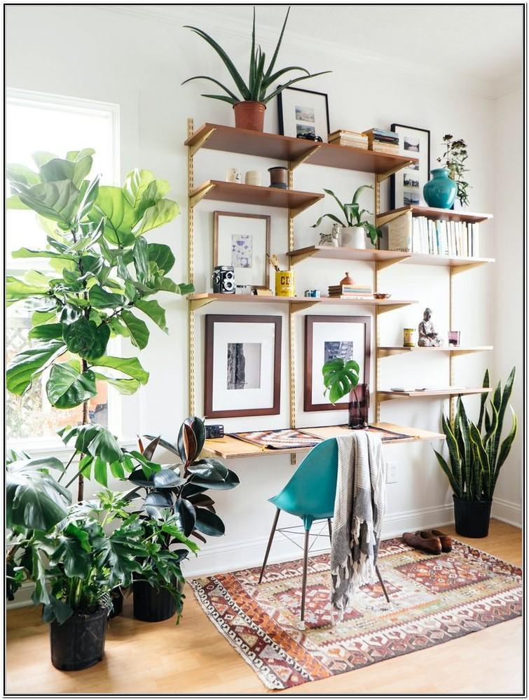 Living Room Plant Wall Shelf Ideas