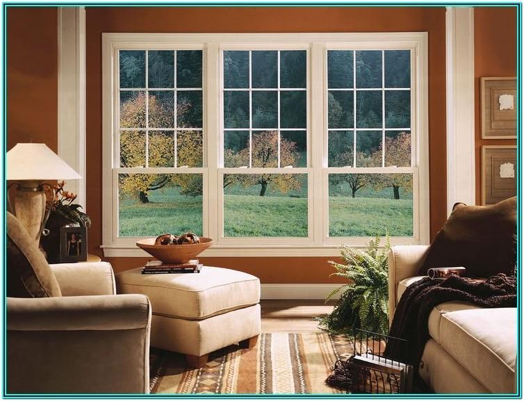 Living Room Remodel Ideas Windows