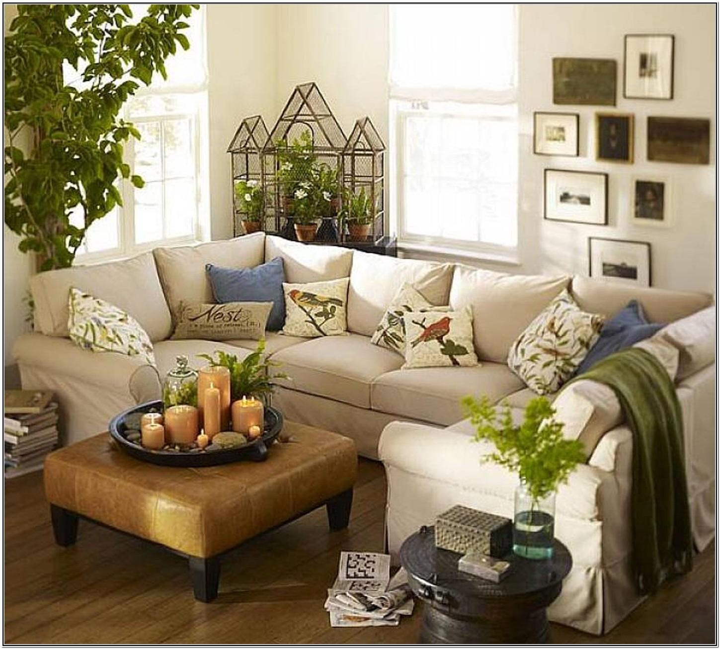 Living Room With Plants Ideas