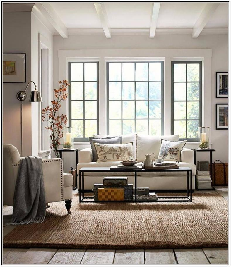 Living Room With Windows Ideas
