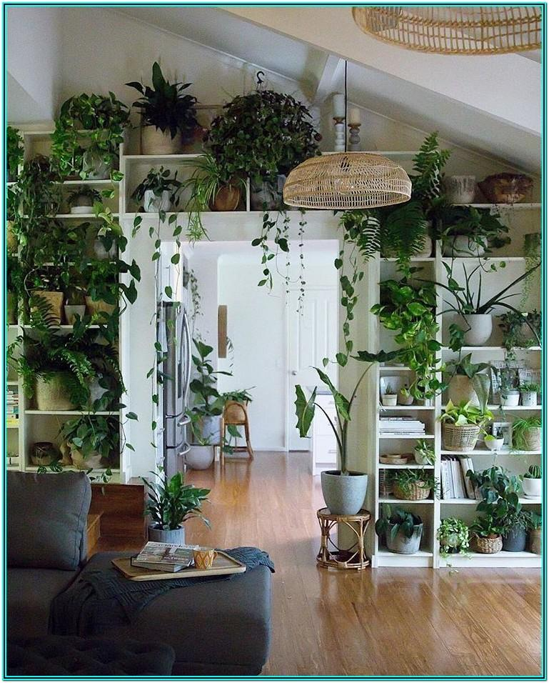 Small Space Indoor Plants Living Room Ideas