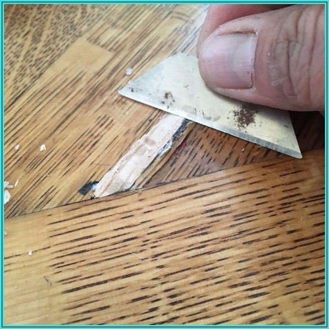 Termite Holes In Hardwood Floors